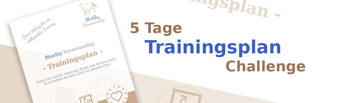 5 Tage Trainingsplan Challenge