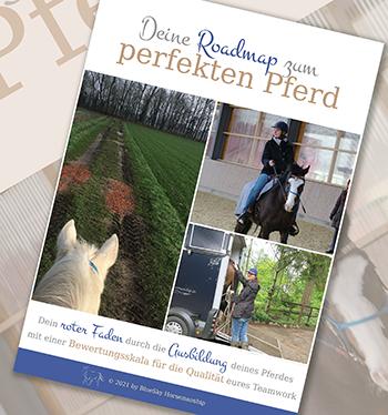 Deine Roadmap zum perfekten Pferd Vorschaubild